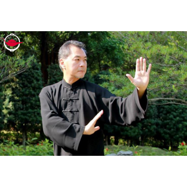 a personal experience of attending a tai chi class In tai chi class we learn how tai chi targets fascia and connective tissues through intelligent conscious movement creating increased health and power.