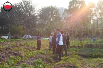 有機農場參觀及原生態製作坊 四人