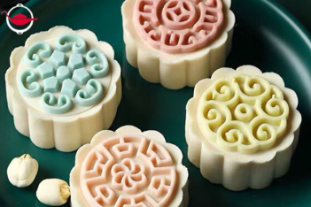 DIY Egg Custard Mooncake Making Kit