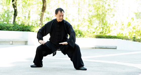 Wellness Tai Chi and Qigong